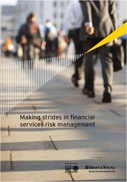 E&Y Risk